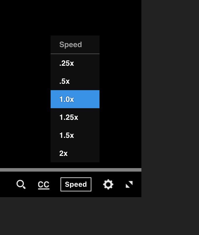 Closeup of speed adjustment options for audio