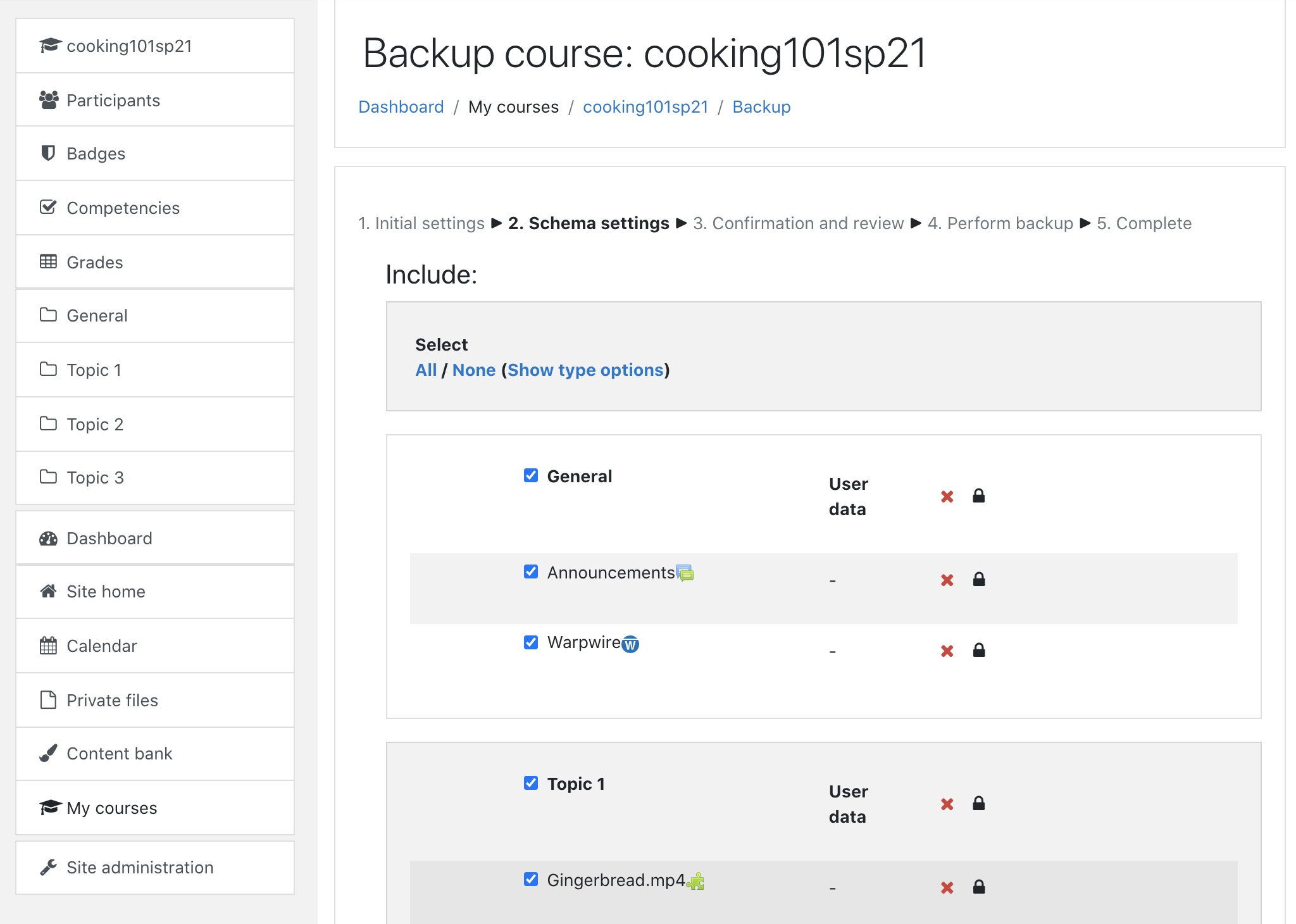 Moodle course backup page: schema settings