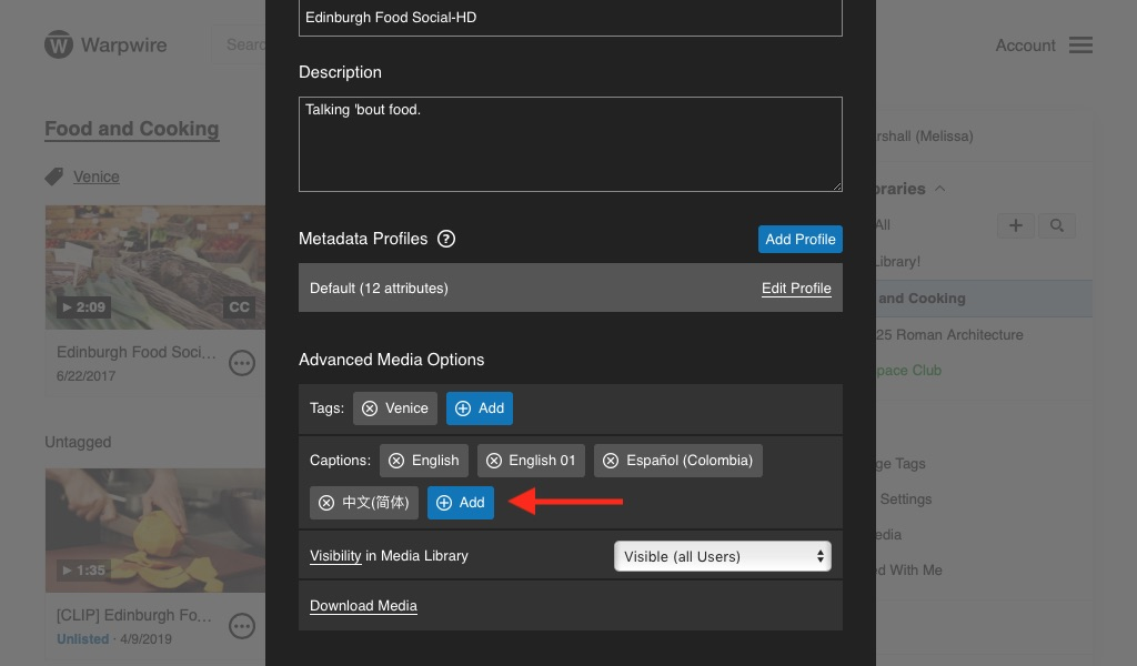 Pane showing all options and settings for a Media Asset