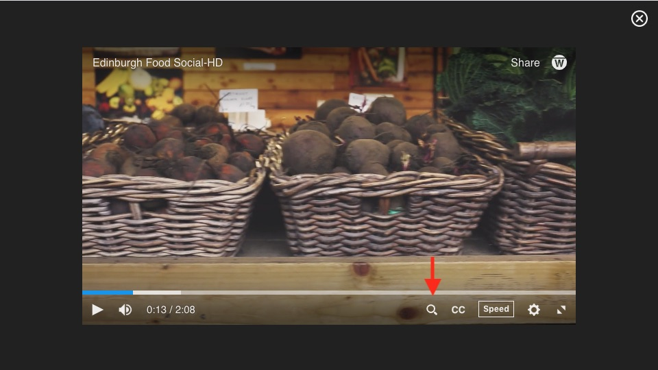 Closeup on caption search button on video player